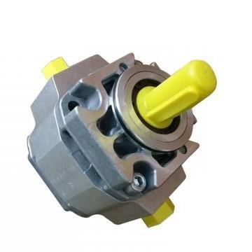 SUMITOMO CQTM63-100F-15 Double Pompe à engrenages