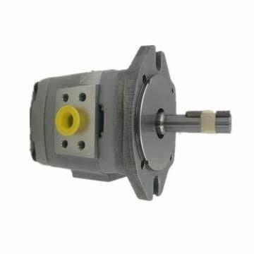SUMITOMO QT42-25-A Medium-pressure Pompe à engrenages
