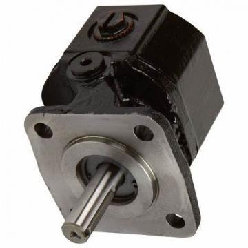 SUMITOMO QT53-63F-A High Pressure Pompe à engrenages