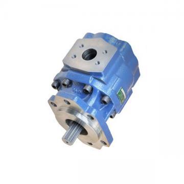 SUMITOMO QT53-50F-A High Pressure Pompe à engrenages
