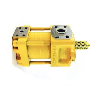 SUMITOMO QT23-6.3F-A High Pressure Pompe à engrenages