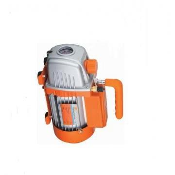 SUMITOMO QT22-6.3-A Double Pompe à engrenages