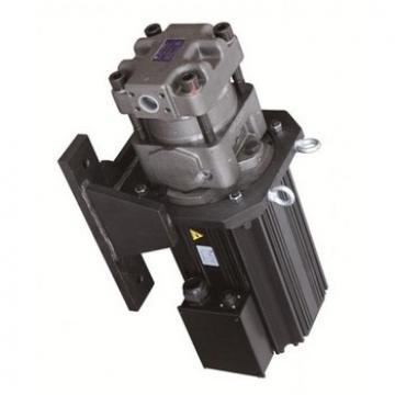 SUMITOMO QT51-125-A Double Pompe à engrenages