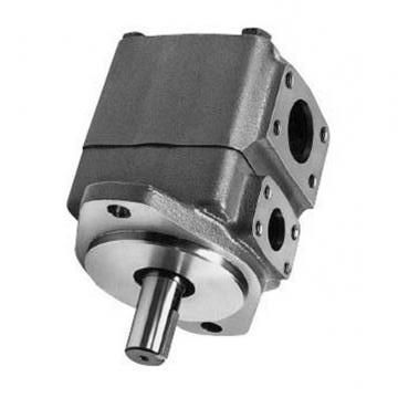 Vickers PV080R1K1L3WUPD+PV080R1L1B1WUP PV 196 pompe à piston