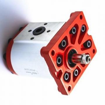 Vickers PV080R1K1A4NULC+PGP505A0080CA1 PV 196 pompe à piston