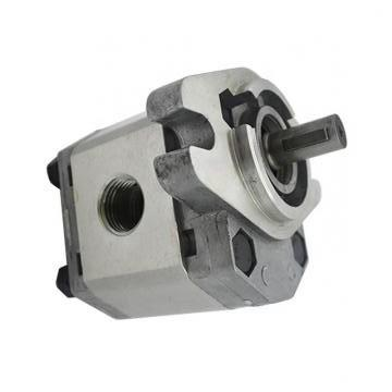 Vickers PV080R1K1J3NFRZ+PV020R1L1T1NMM PV 196 pompe à piston
