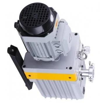 Vickers PV080R1K1L3VFRZ+PVAC2PCMVSJW35 PV 196 pompe à piston